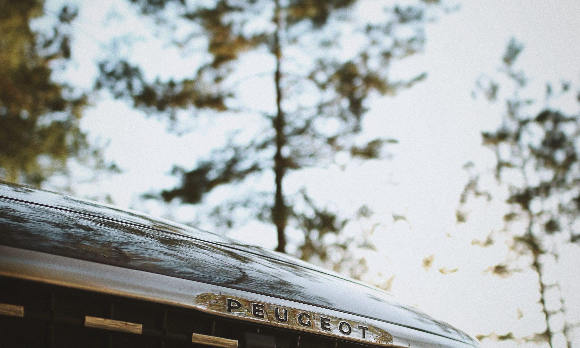 Hvad kan din Peugeot 208 holde til?